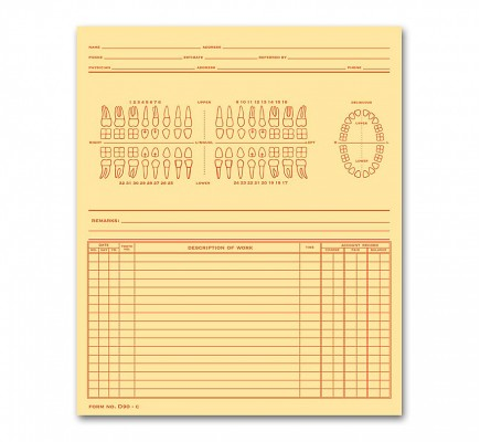 Dental Exam Record Numbered Teeth System C Folder Style