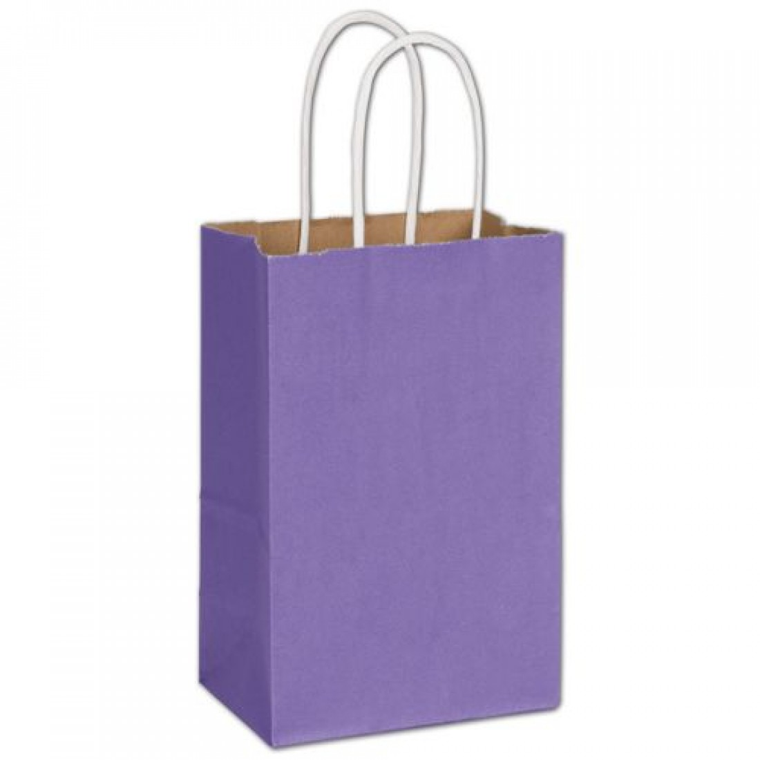 Electric Violet Mini Cub Bag