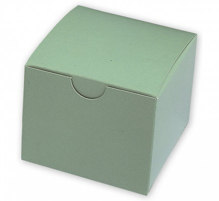 Model Boxes Single Green