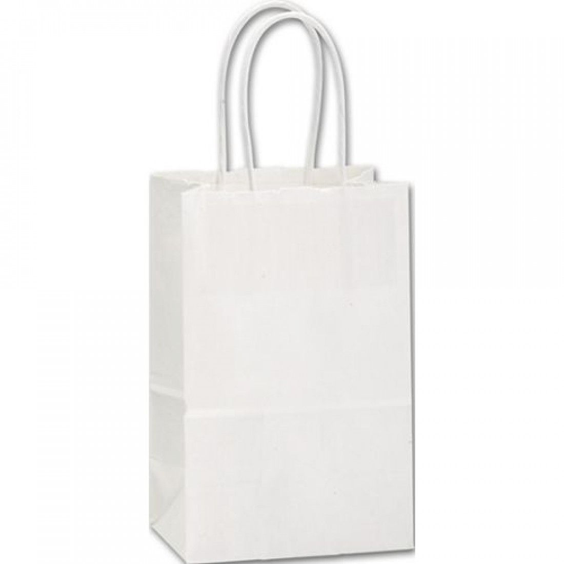 Recyc White MiniCub Papr Bag