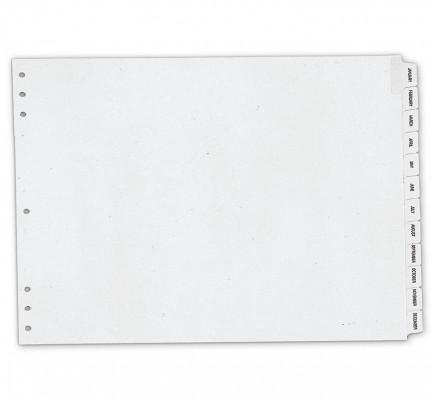 "Timescan Monthly Index Divider 17 X 11"""