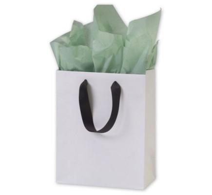 White Matte Euro Bag 8x4x10