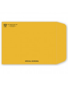 Brown Open End Kraft Envelope