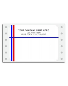 Continuous Mailing Label - Blue/Red Line (Item #D216) - Pin-Fed  Labels  - Mailing Labels | Printez.com