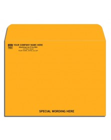 Kraft Standard Mailing Envelopes