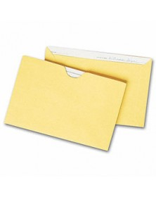 Straight Tab Card File Pocket, 4 1/8 x 6 1/8, Buff (Item # 1421) - Business Checks Supplies  - Business Checks | Printez.com