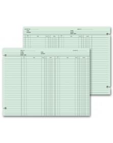 Accounting Ledger Sheets - Double Entry