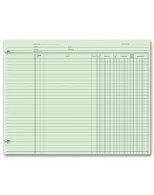 Accounting Ledger Sheets - End Balance