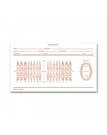 Dental Exam Record Slips Numbered Teeth System C - D86C