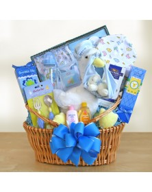 Stork Delivery Baby Boy Gift Baskets