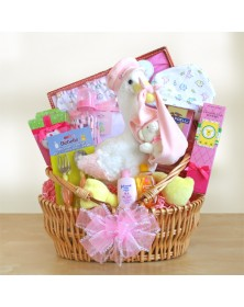 Stork Delivery Girl Baby Gift Baskets