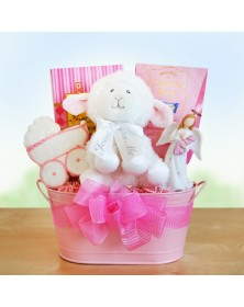 Girl Christening Baby Gift Baskets