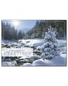 Sweet Seclusion Holiday Cards