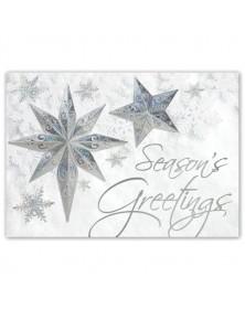 Stars of Wonder Holiday Cards