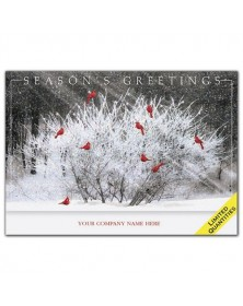 Cardinal Calling Holiday Cards