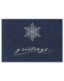 Starry Indigo Holiday Cards