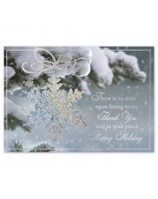 Sparkling Splendor Holiday Cards