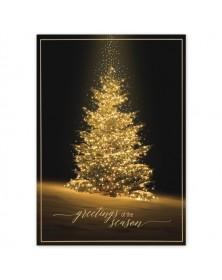 Evening Shine Holiday Cards