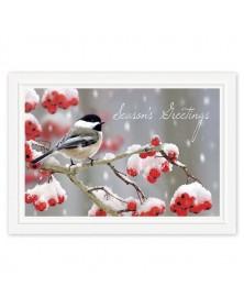 Tweet Greetings Holiday Cards