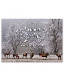Woodland Magic Holiday Cards