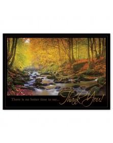 Radiant Thanks Thanksgiving Cards