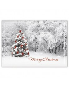 Secret Sighting Holiday Greeting Cards
