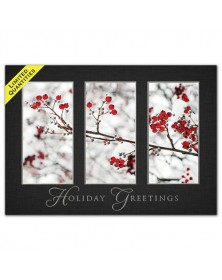 Windows of Beauty Holiday Cards