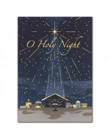 Newborn King Holiday Cards