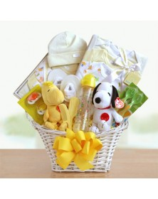 Baby Welcome Basket