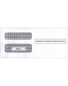 2017 1099 Double Window Envelope