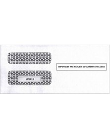2017 1099 Double Window Envelope, Self Seal
