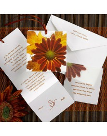 Autumn Daisy (MRN3785-230) - Full Color Products  -  | Printez.com