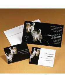 Orchids (MR98DP-43) - Full Color Products  -    Printez.com